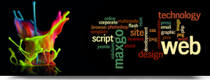 web development in Lahore