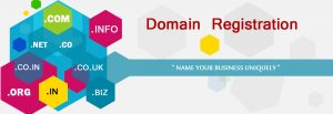 Domain Name Registration in Pakistan