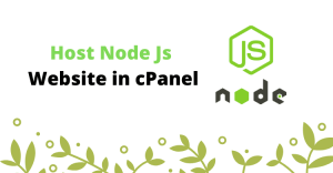 setup node.js website in cpanel